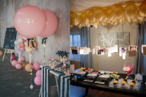 party suppliers for balloon theme party